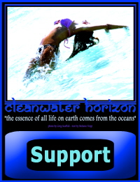 Cleanwater Horizon Support  - click to return to FILM PROJECT page